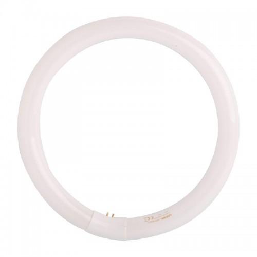 TUBO FLUORESCENTE CIRCULAR L40/865-40W